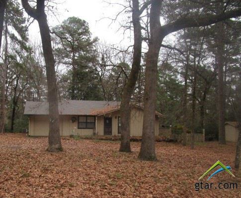 115 Green Mesa Lane, Holly Lake Ranch, TX 75765 (MLS #10090312) :: RE/MAX Impact