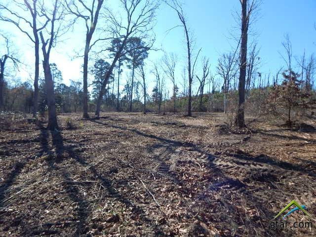 TBD Lot 114 Raintree Lakes, Big Sandy, TX 75755 (MLS #10090489) :: RE/MAX Impact