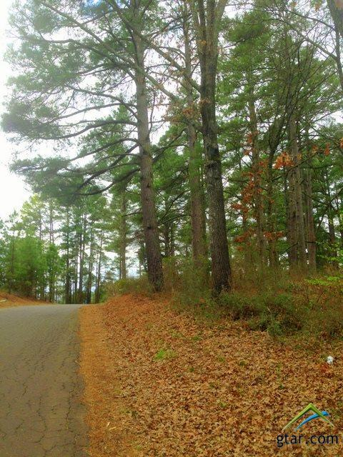 1.7 Acres Cr 2133 & Cr 2140, Quitman, TX 75783 (MLS #10091329) :: The Rose City Team