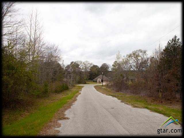 Lot 63 Johnston Street, Arp, TX 75750 (MLS #10091671) :: The Wampler Wolf Team