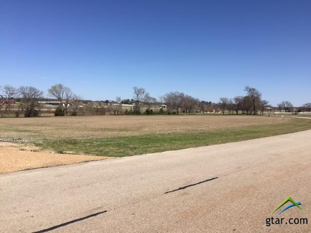 23050 Bridle View, Lindale, TX 75771 (MLS #10091913) :: The Wampler Wolf Team