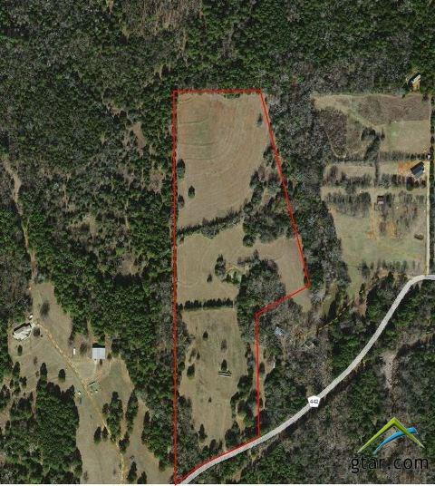 19319 County Road 442, Lindale, TX 75771 (MLS #10092215) :: The Wampler Wolf Team
