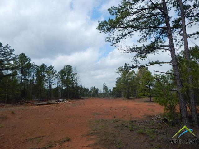TBD 46 Acres Periwinkle Road - Photo 1