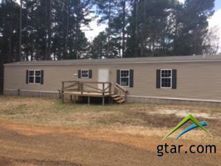 1253 Woodhue, Bullard, TX 75757 (MLS #10092787) :: RE/MAX Impact