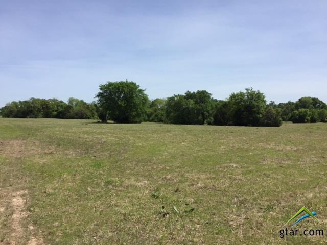 12760 Fm 2613, Kemp, TX 75143 (MLS #10093984) :: The Wampler Wolf Team