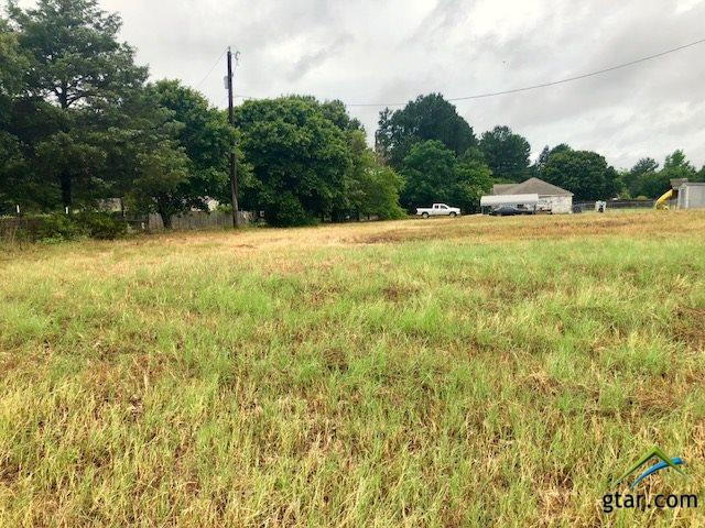 15210 Cr 475 Lot 12, Tyler, TX 75706 (MLS #10096387) :: The Wampler Wolf Team
