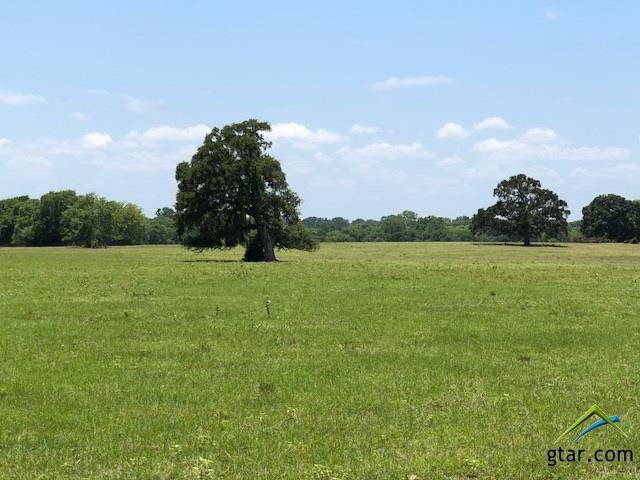 0000 County Road 178, Flint, TX 75762 (MLS #10097552) :: The Wampler Wolf Team