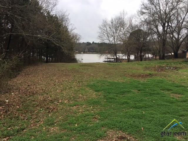 lot 2 Cedar Bay Dr., Bullard, TX 75757 (MLS #10098578) :: The Wampler Wolf Team