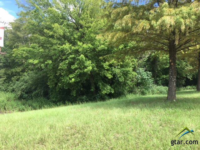 735 N Northeast Loop 323, Tyler, TX 75702 (MLS #10100028) :: RE/MAX Impact