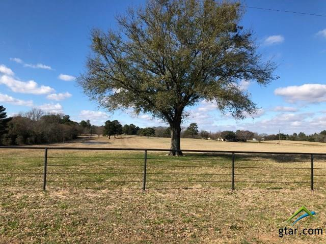 18820 Cr 49, Tyler, TX 75704 (MLS #10103450) :: The Wampler Wolf Team