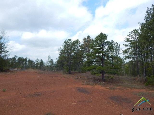 TBD 28 Acres Periwinkle - Photo 1