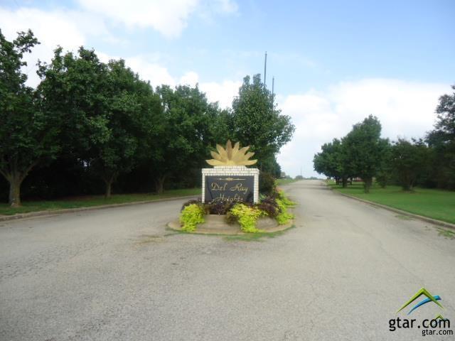 000 Dela Cruz, Winnsboro, TX 75494 (MLS #10106218) :: Griffin Real Estate Group