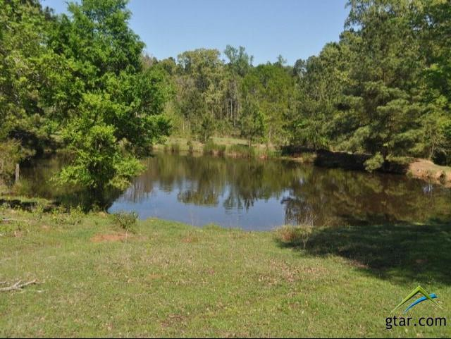 000 An County Road 338, Neches, TX 75779 (MLS #10106243) :: The Wampler Wolf Team