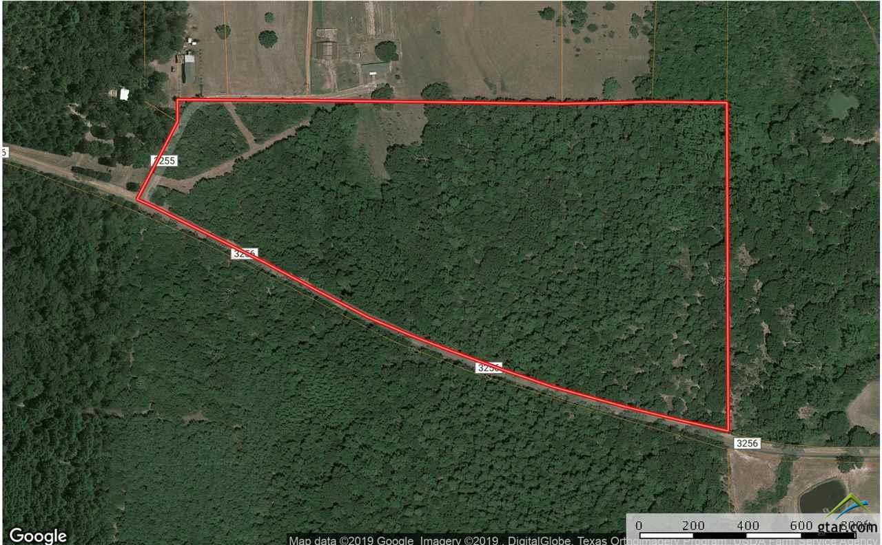 Map Of Quitman Tx.0000 Cr 3256 Quitman Tx 75783 Mls 10106712 Re Max Professionals The Burks Team