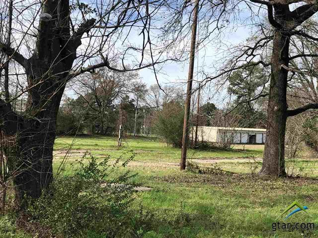 TBD Old Coffeeville Road, Gilmer, TX 75644 (MLS #10106811) :: RE/MAX Professionals - The Burks Team