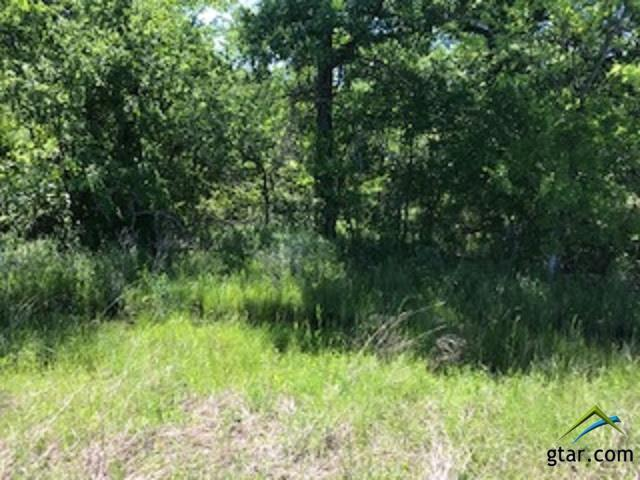 0 County Road 2100, Kemp, TX 75143 (MLS #10108975) :: The Wampler Wolf Team