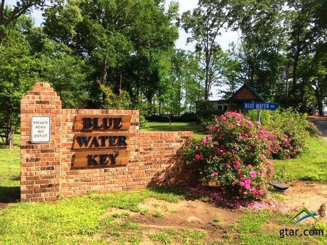 Lot 73 Blue Water Rd. /, Chandler, TX 75758 (MLS #10109169) :: RE/MAX Professionals - The Burks Team