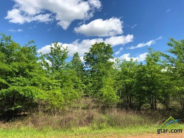 TBD County Road 2472, Naples, TX 75568 (MLS #10109489) :: The Wampler Wolf Team