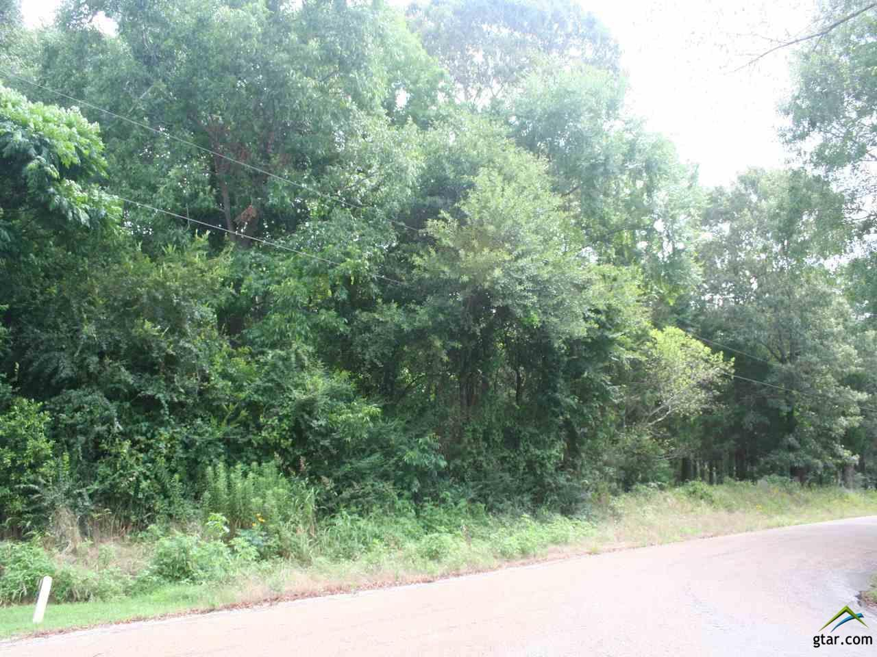 426 County Road 1609 - Photo 1