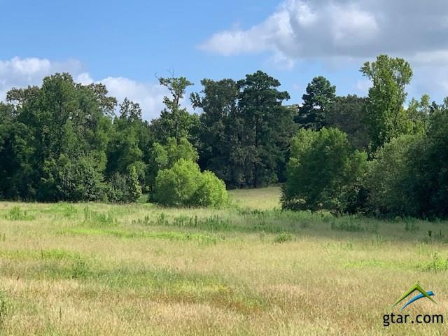 19522 Cr 2152, Troup, TX 75789 (MLS #10111202) :: RE/MAX Professionals - The Burks Team