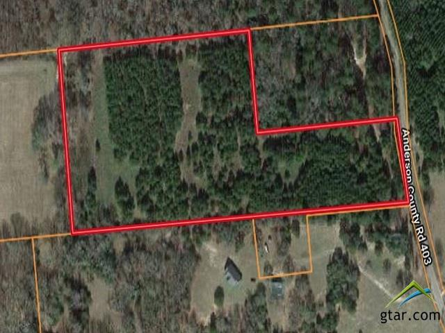 00 Acr 403, Palestine, TX 75803 (MLS #10111540) :: The Wampler Wolf Team