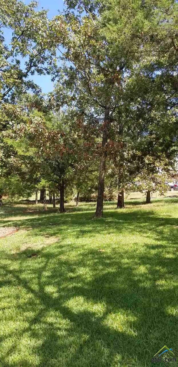 130 Lake Lou Ella, Bullard, TX 75757 (MLS #10114036) :: RE/MAX Professionals - The Burks Team