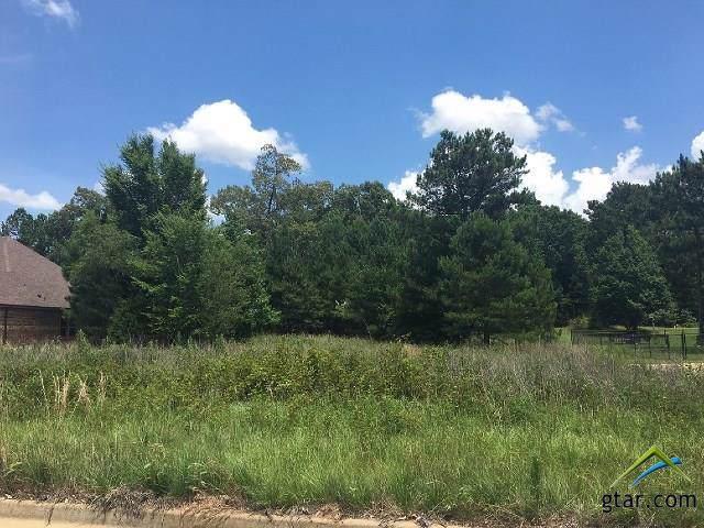 10881 Deer Creek Dr., Tyler, TX 75707 (MLS #10114083) :: RE/MAX Impact