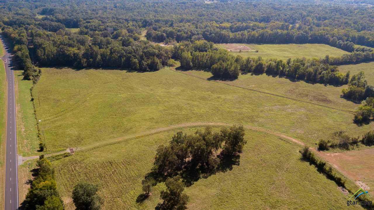 TBD Hwy 259 180 Acres - Photo 1
