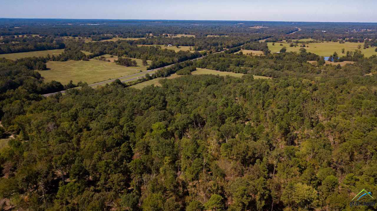 TBD Hwy 259 & Cr 317 523.53 Acres - Photo 1