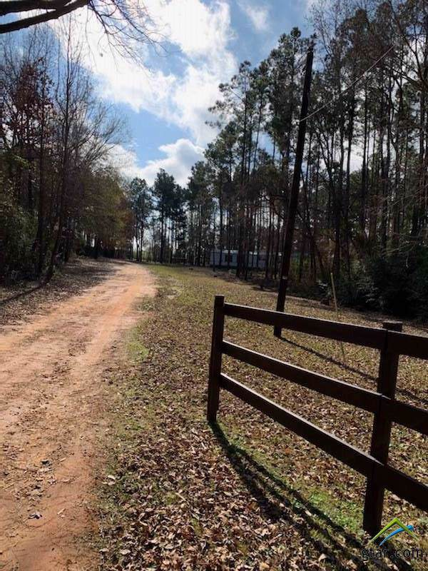 21827 Cr 2160, Troup, TX 75789 (MLS #10116581) :: The Wampler Wolf Team