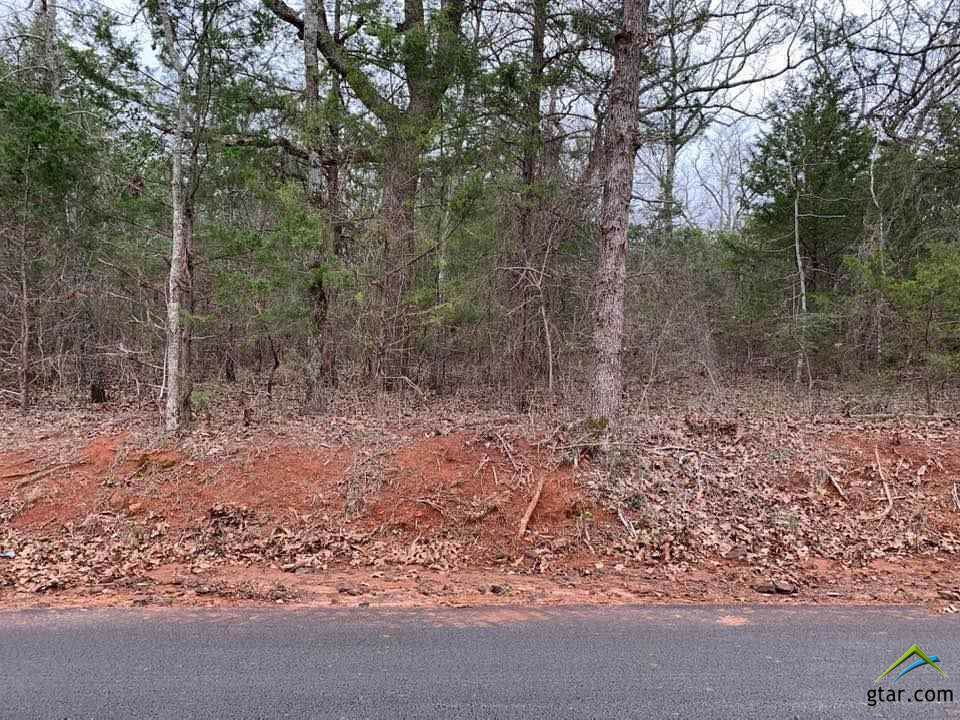 Lot 4 Old Tyler Rd. - Photo 1