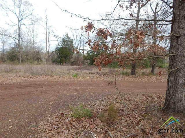 TBD Lot 73 Red Pheasant, Gilmer, TX 75644 (MLS #10118274) :: RE/MAX Professionals - The Burks Team
