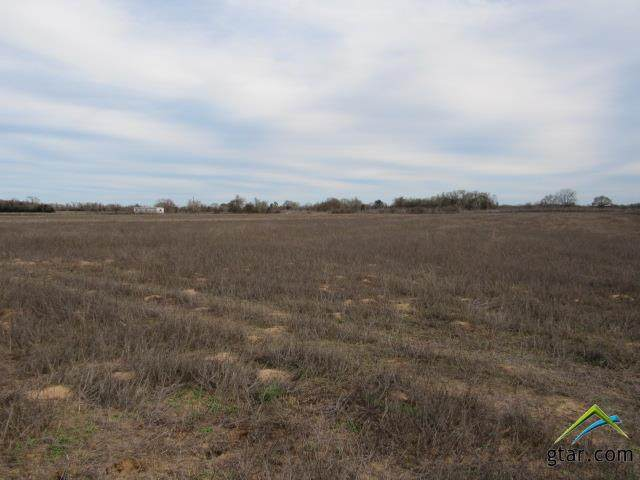 Lot 10 Cr 249, Oakwood, TX 75855 (MLS #10119240) :: The Wampler Wolf Team