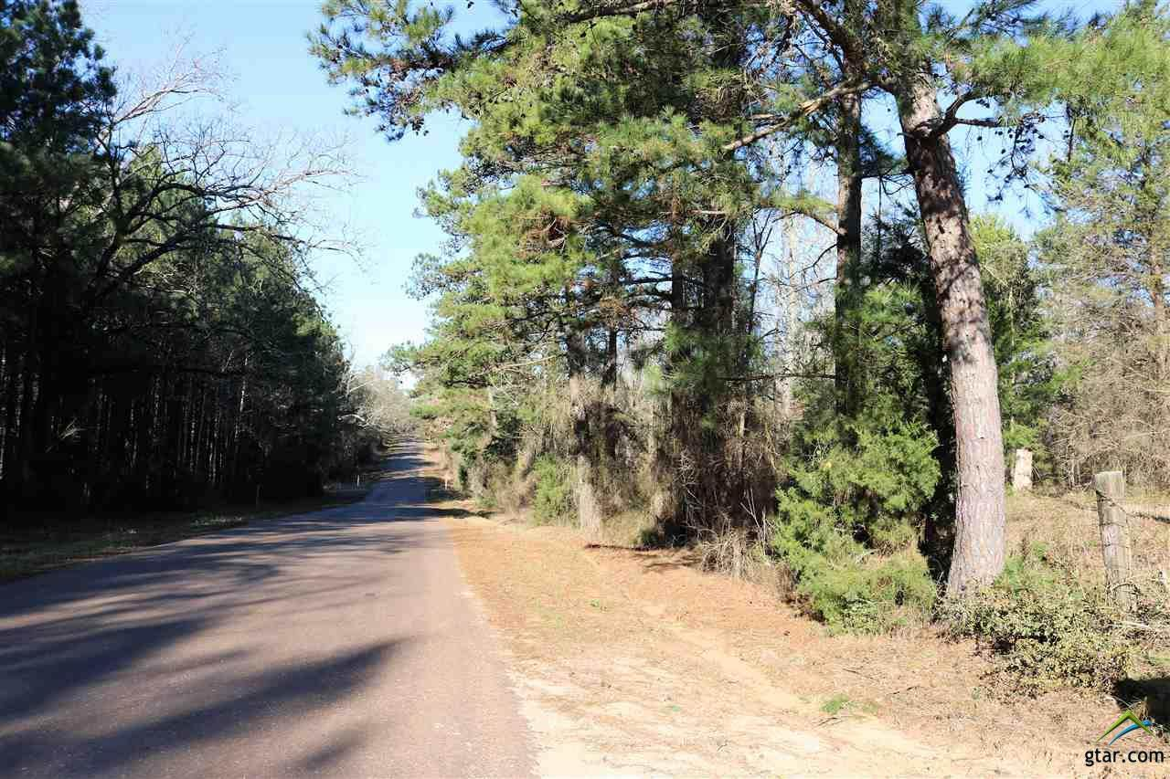 TBD Davidson Road, 35.667 Ac - Photo 1