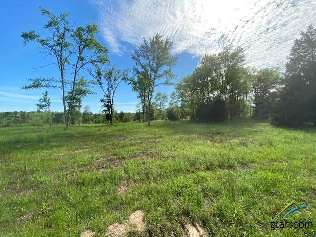 Tract 2 (TBD) Cr 1714, Jacksonville, TX 75766 (MLS #10120568) :: The Wampler Wolf Team