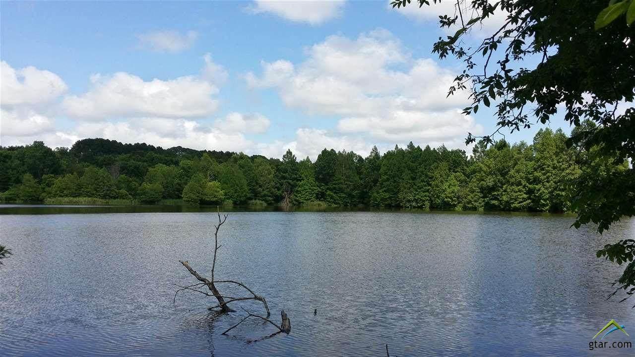 204 Lago Vista Dr - Photo 1
