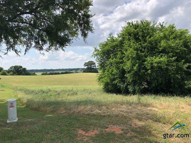 106 Pine View Court, Athens, TX 75752 (MLS #10122469) :: RE/MAX Professionals - The Burks Team