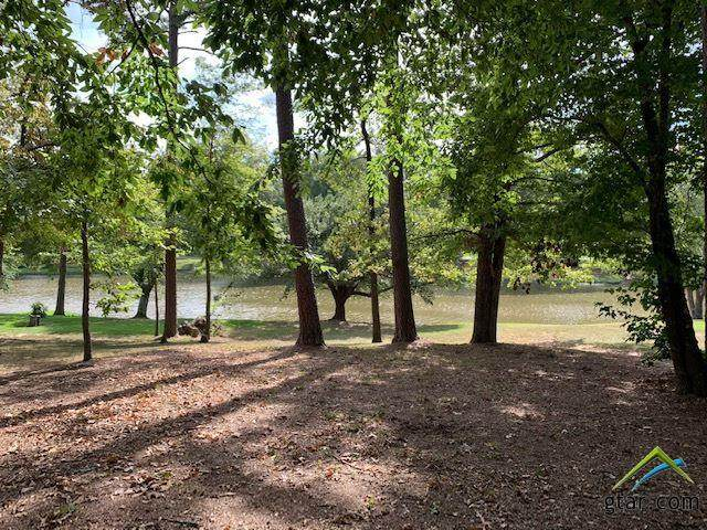 1400 Secluded, Longview, TX 75604 (MLS #10122732) :: Griffin Real Estate Group