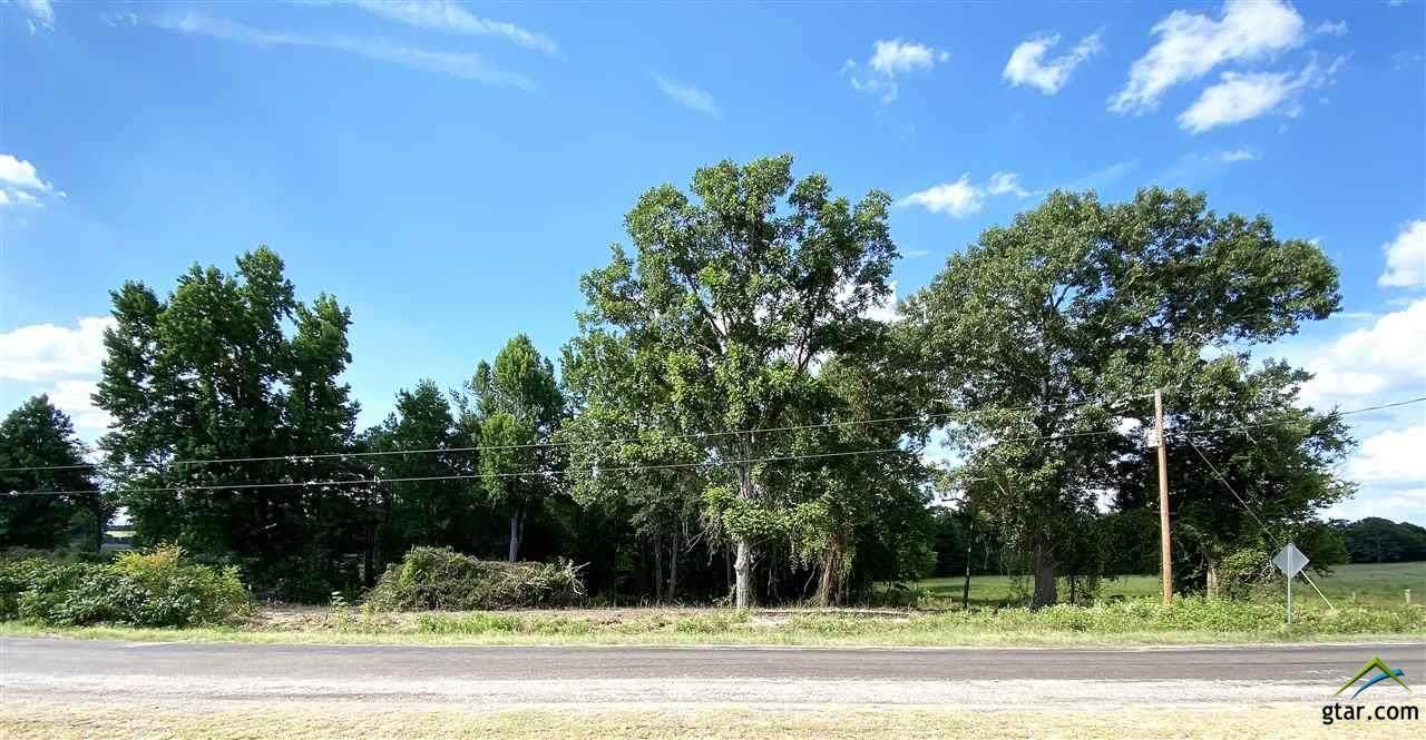 399 County Road  233 - Photo 1