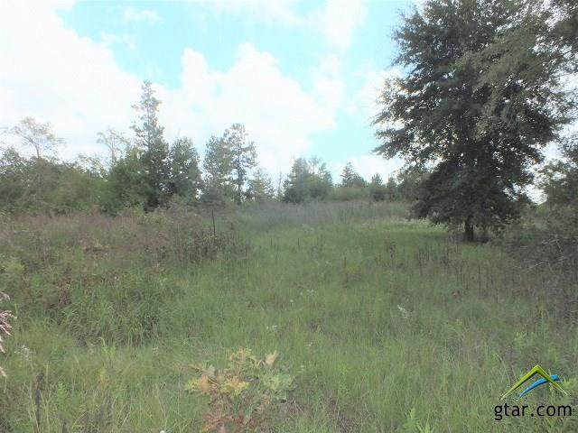 000 Hwy. 69 South - Photo 1