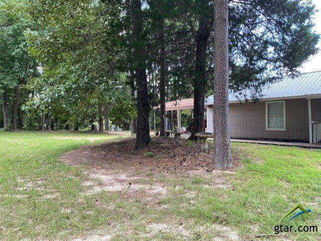 2876 Fm 1647, Winnsboro, TX 75494 (MLS #10125146) :: The Wampler Wolf Team