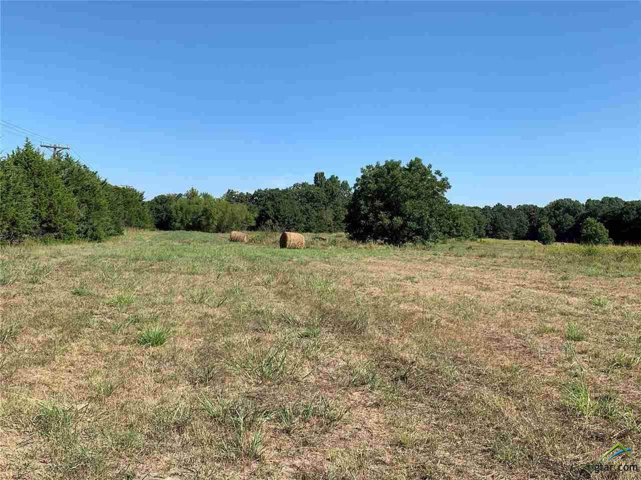 44 acres Hwy 69 - Photo 1