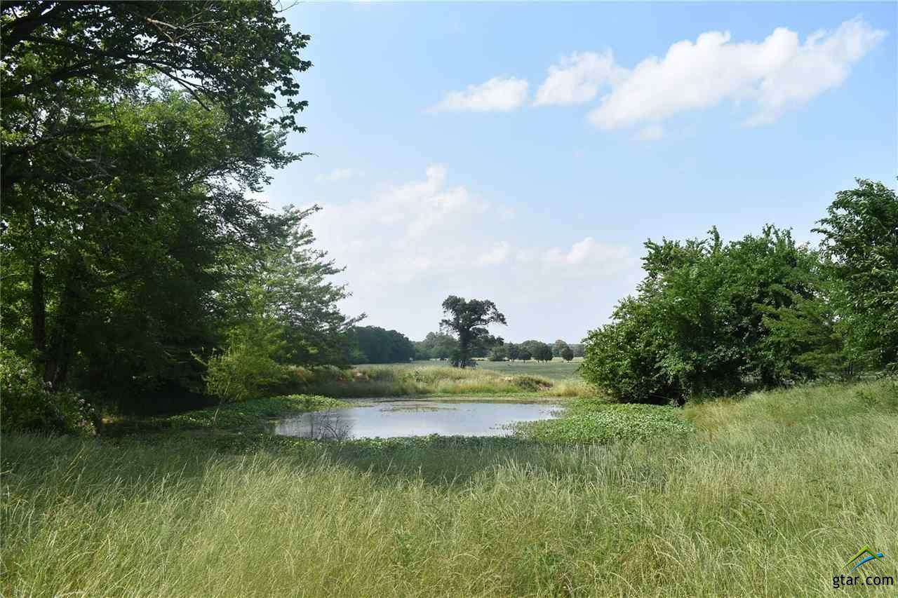 Lot 16 County Road 4612 - Photo 1