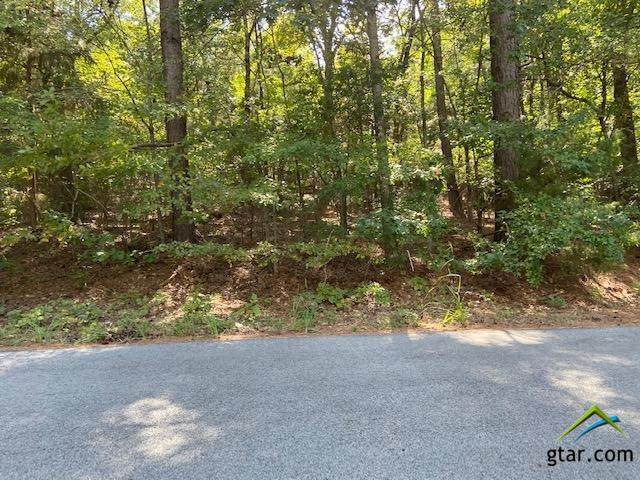 18XXX Lakeview Dr., Troup, TX 75789 (MLS #10126997) :: Griffin Real Estate Group