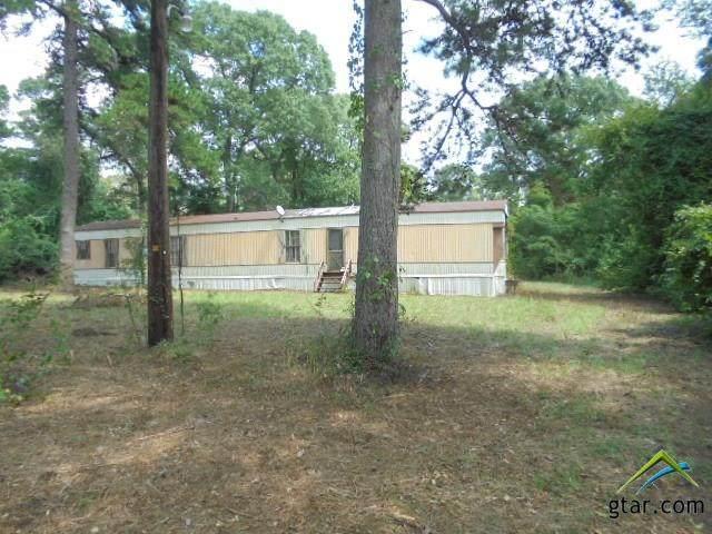 4515 Ridge Rd, Chandler, TX 75758 (MLS #10127402) :: Griffin Real Estate Group