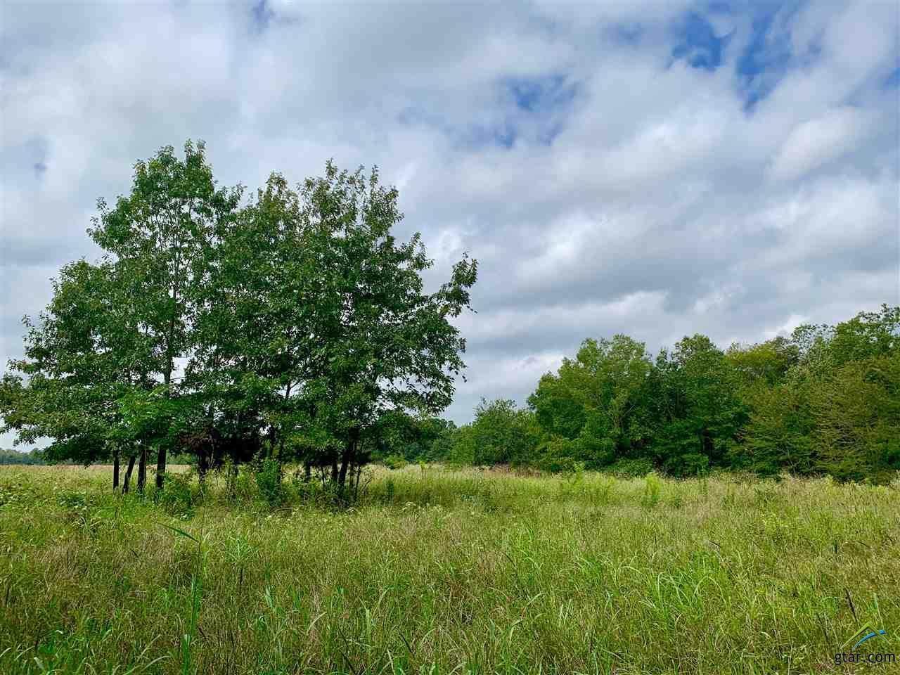 1318 County Road 1350 - Photo 1