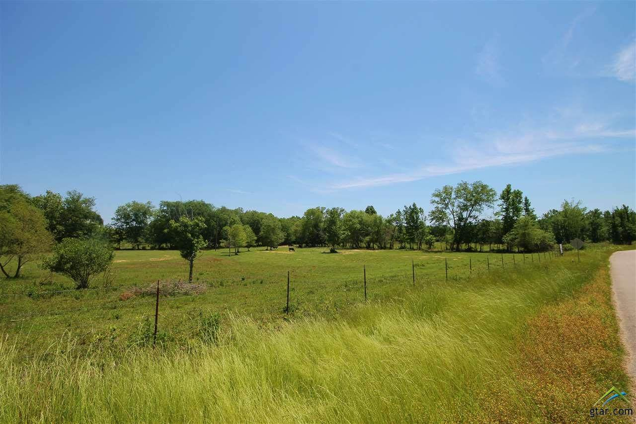 TBD Cr 463 (Woodsprings Road) - Photo 1