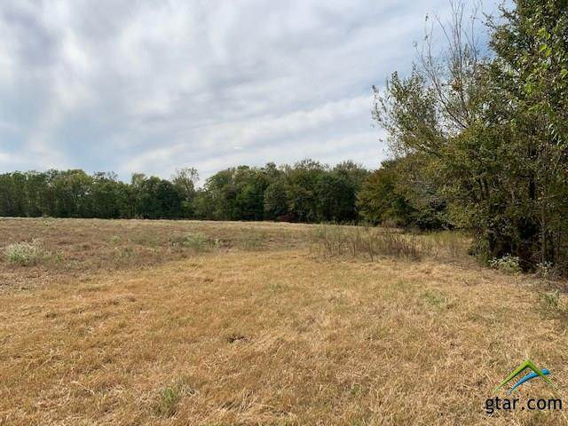 Lot 6 County Road 1560, Alba, TX 75410 (MLS #10128040) :: RE/MAX Professionals - The Burks Team