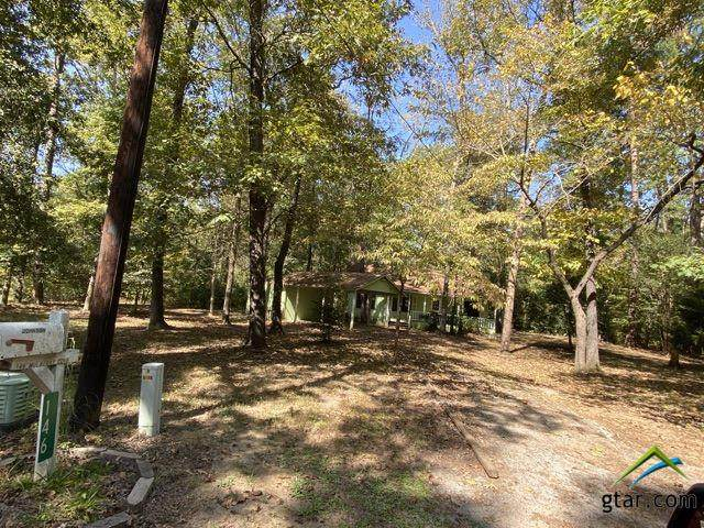 146 Mulberry Cv, Holly Lake Ranch, TX 75765 (MLS #10128143) :: RE/MAX Professionals - The Burks Team