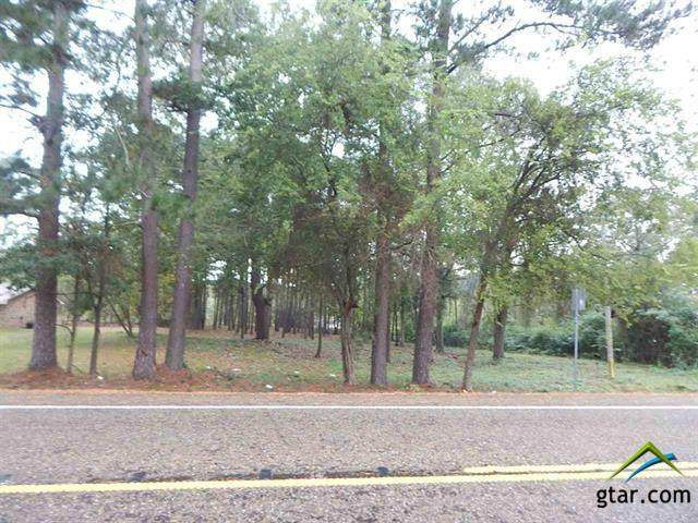 TBD N .85 Acre Hwy 155, Gilmer, TX 75644 (MLS #10128168) :: RE/MAX Professionals - The Burks Team
